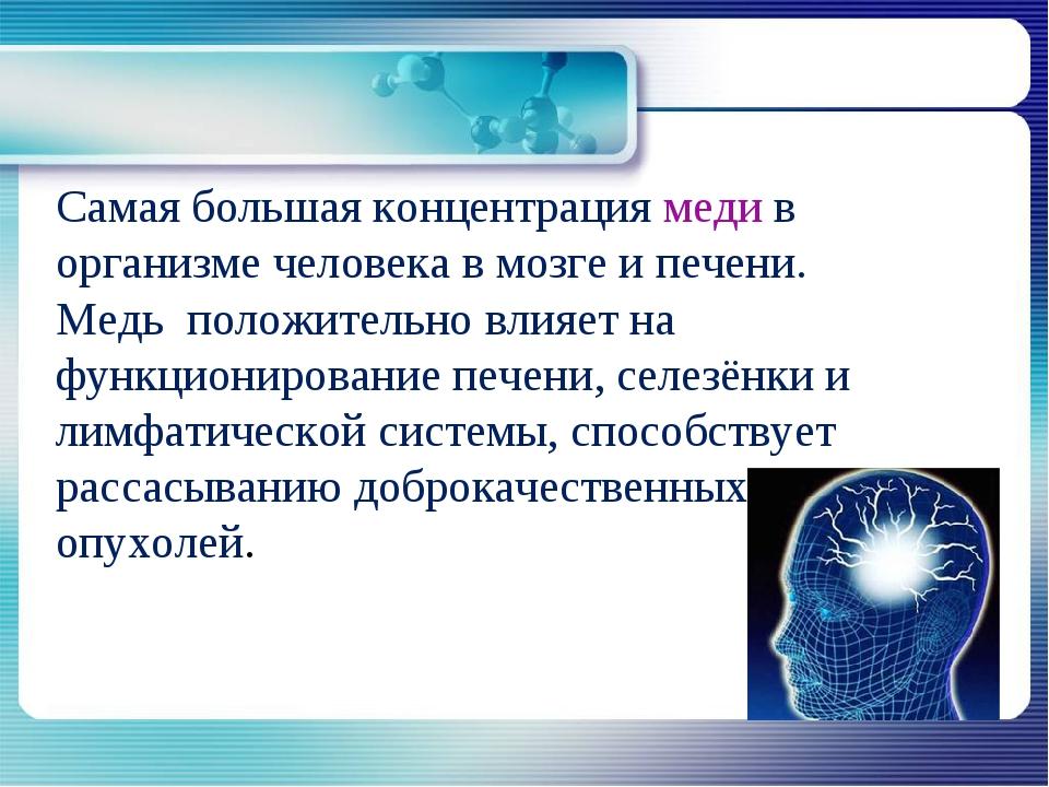 Самая большая концентрация меди в организме человека в мозге и печени. Медь п...