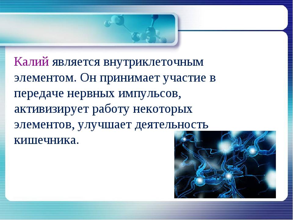 Калий является внутриклеточным элементом. Он принимает участие в передаче не...