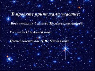 В проекте принимали участие: Воспитанник 6 класса Комиссаров Андрей Учитель