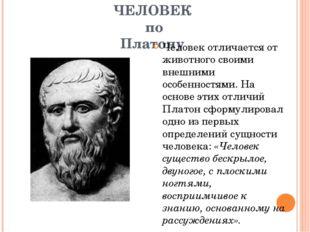 ЧЕЛОВЕК по Платону Человек отличается от животного своими внешними особенност