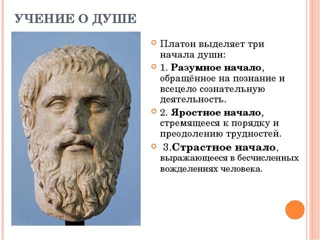 УЧЕНИЕ О ДУШЕ Платон выделяет три начала души: 1. Разумное начало, обращённое...