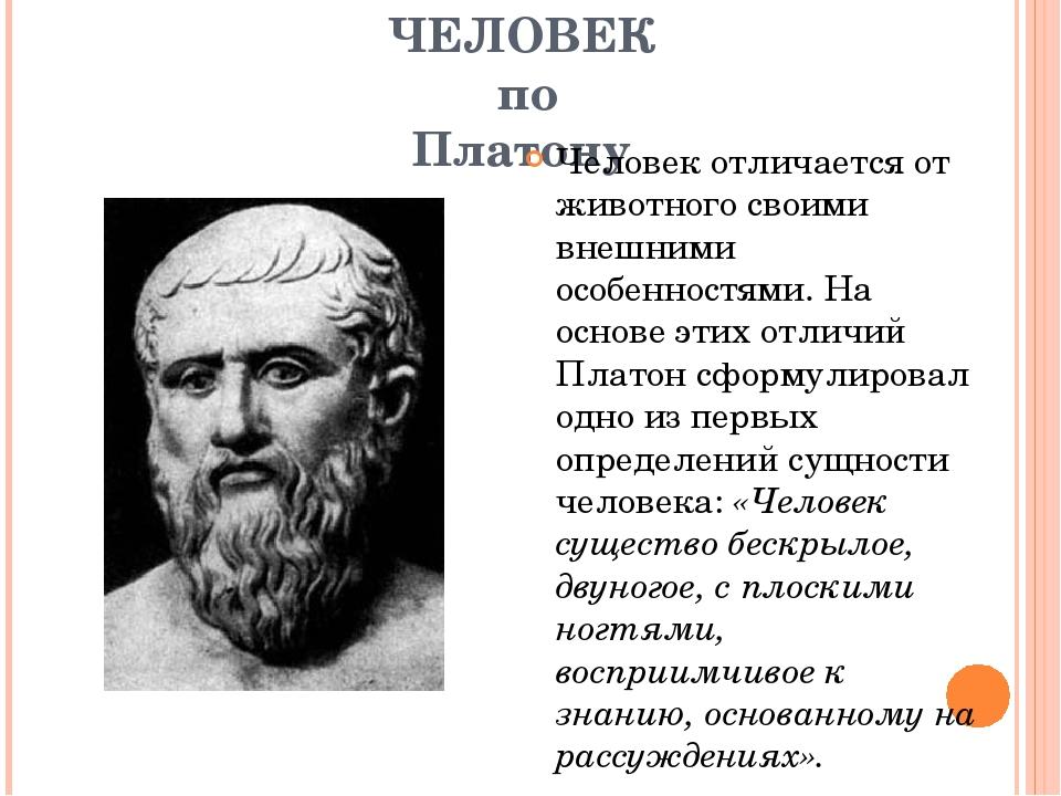 ЧЕЛОВЕК по Платону Человек отличается от животного своими внешними особенност...