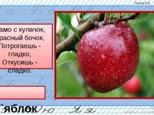 Само с кулачок, Красный бочок, Потрогаешь - гладко, Откусишь - сладко. `яблок
