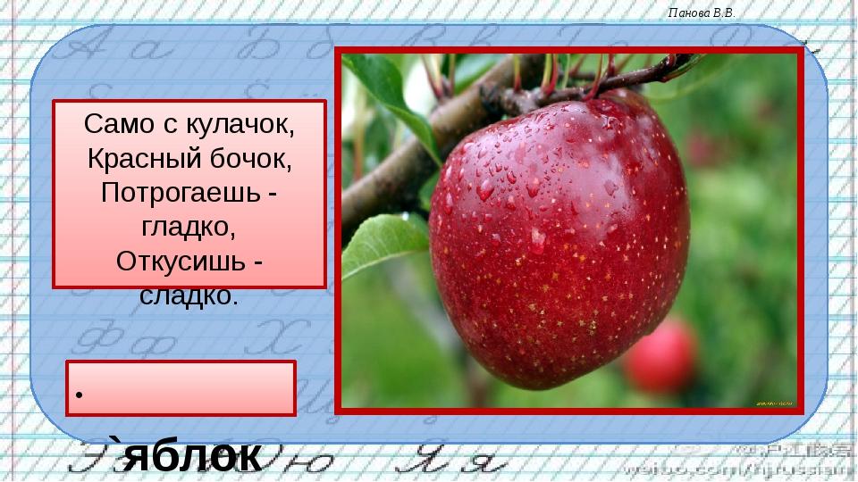 Само с кулачок, Красный бочок, Потрогаешь - гладко, Откусишь - сладко. `яблок...
