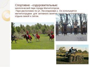 Спортивно –оздоровительные: экологический парк города Магнитогорска Парк расп