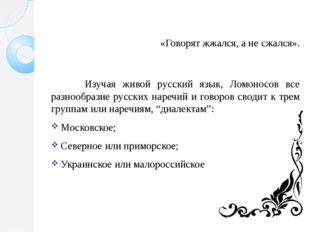 «Говорят жжался, а не сжался». Изучая живой русский язык, Ломоносов все разн