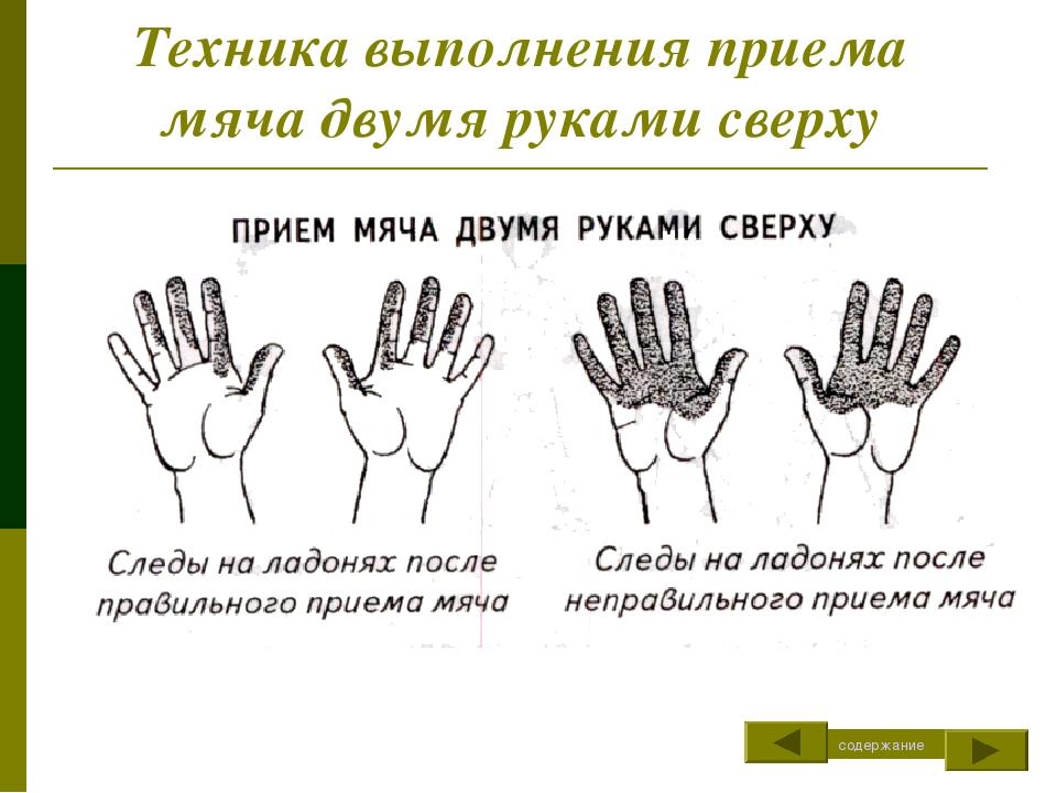 Техника выполнения приема мяча двумя руками сверху содержание