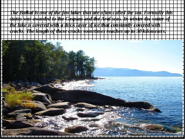 The Baikal is one of the few lakes that are often called the sea. Formally th...