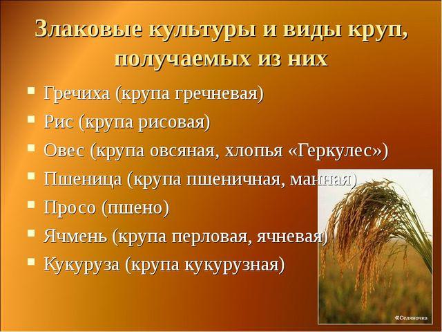 Злаковые культуры и виды круп, получаемых из них Гречиха (крупа гречневая) Ри...