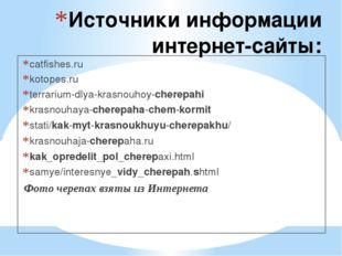 Источники информации интернет-сайты: catfishes.ru kotopes.ru terrarium-dlya-k