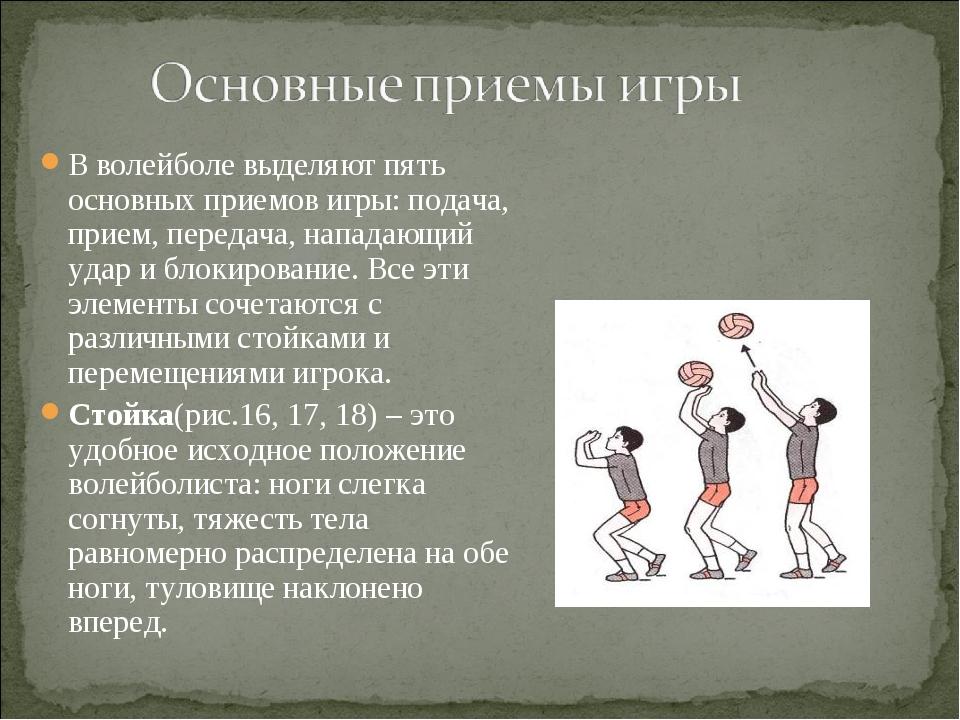 В волейболе выделяют пять основных приемов игры: подача, прием, передача, нап...