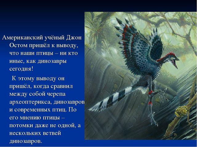 Американский учёный Джон Остом пришёл к выводу, что наши птицы – ни кто иные,...