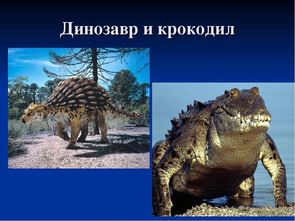Динозавр и крокодил