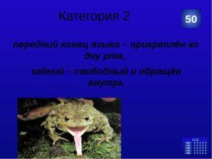 Категория 3 хамелеон 10 Категория Ваш ответ