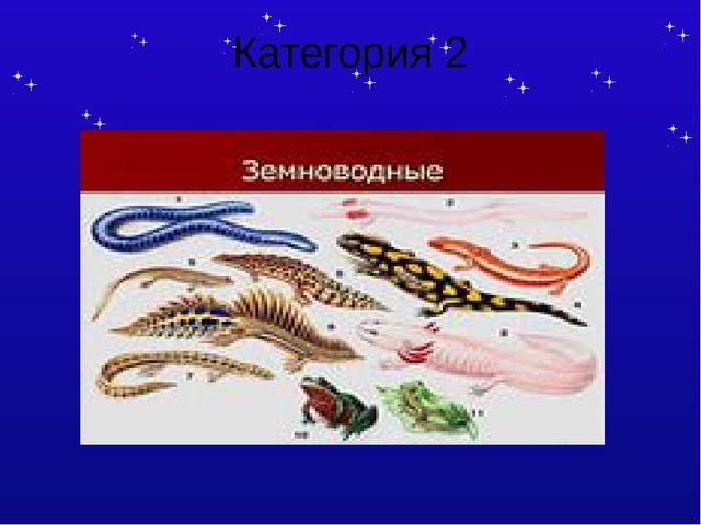 Категория 1 найти спрятанные в филворде названия рыб 20 К А Р А С Ь П А С У Д...