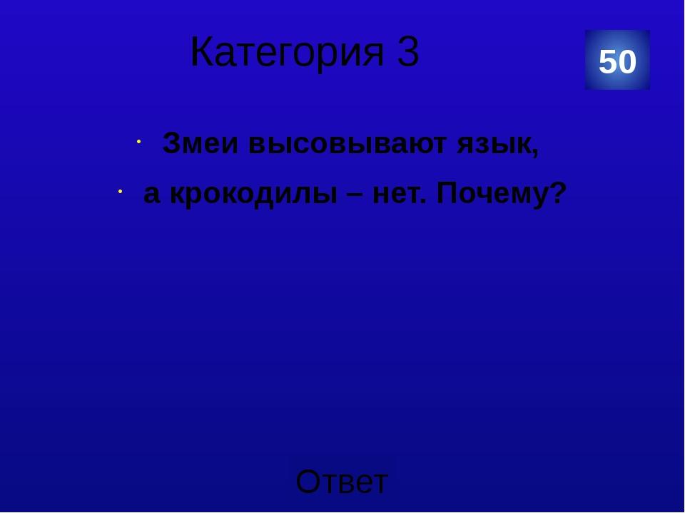 Категория 4 одинаковая 40 Категория Ваш ответ