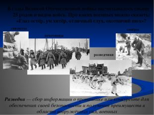 В годы Великой Отечественной войны насчитывалось свыше 25 родов и видов войск