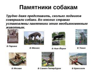 Памятники собакам Трудно даже представить, сколько подвигов совершали собаки.