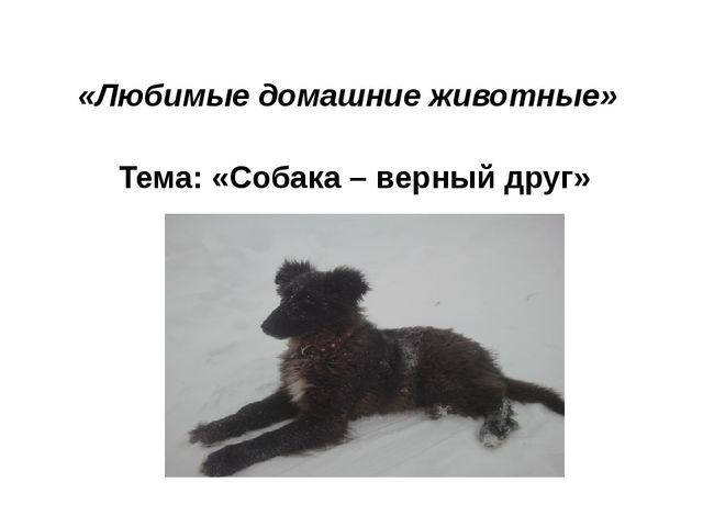 «Любимые домашние животные» Тема: «Собака – верный друг»