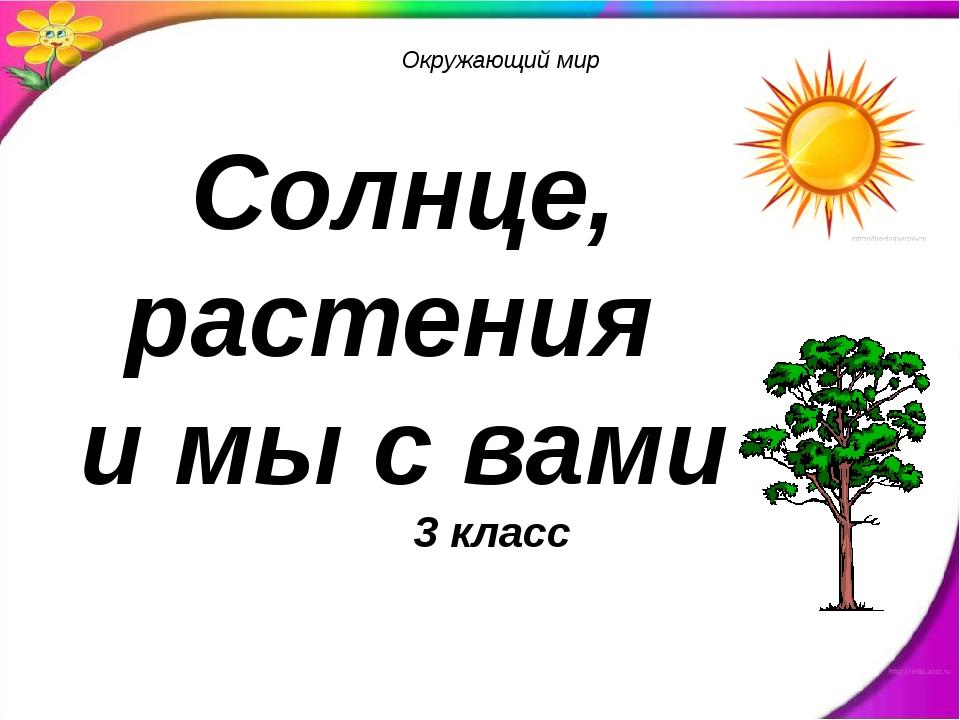 Солнце, растения и мы с вами Окружающий мир 3 класс