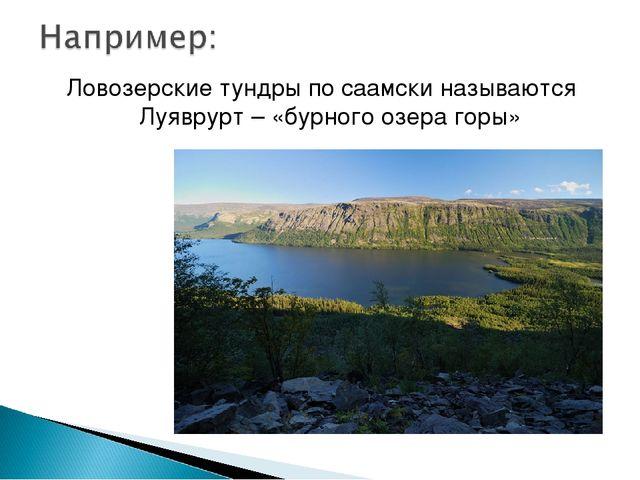 Ловозерские тундры по саамски называются Луяврурт – «бурного озера горы»