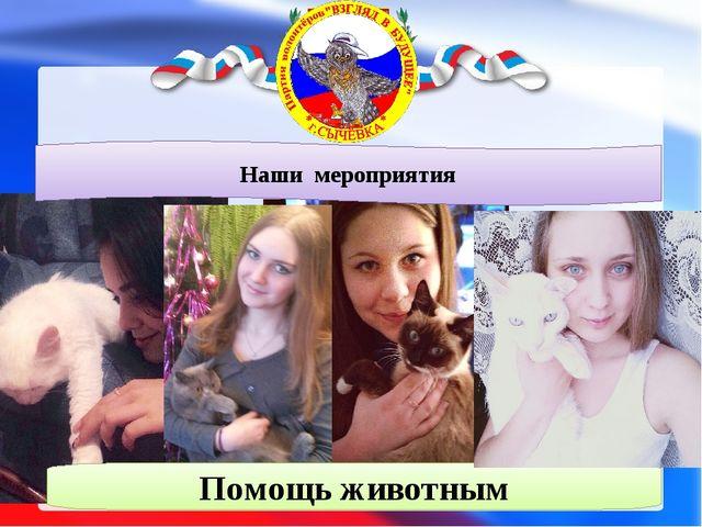 Наши мероприятия Помощь животным