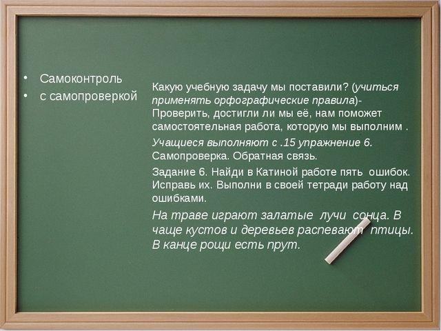 Самоконтроль с самопроверкой Какую учебную задачу мы поставили? (учиться прим...