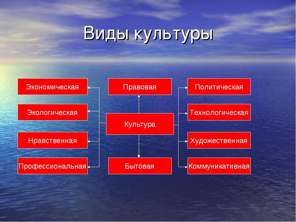 Виды культуры Экономическая Экологическая Нравственная Профессиональная Бытов...