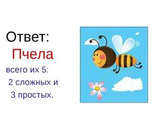Ответ: Пчела всего их 5: 2 сложных и 3 простых.