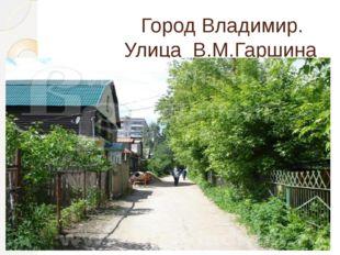 Город Владимир. Улица В.М.Гаршина