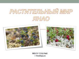 МБОУ СОШ №8 г Ноябрьск
