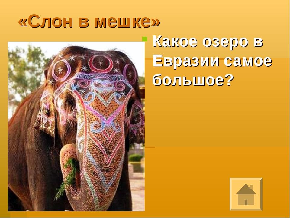 «Слон в мешке» Какое озеро в Евразии самое большое?