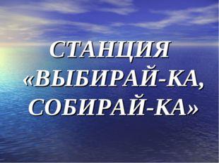 СТАНЦИЯ «ВЫБИРАЙ-КА, СОБИРАЙ-КА»