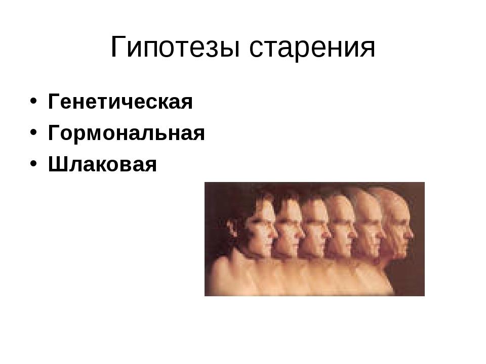 Гипотезы старения Генетическая Гормональная Шлаковая