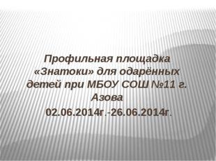 Профильная площадка «Знатоки» для одарённых детей при МБОУ СОШ №11 г. Азова 0