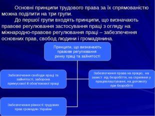 Основні принципи трудового права за їх спрямованістю можна поділити на три г