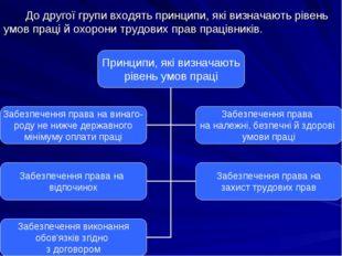 До другої групи входять принципи, які визначають рівень умов праці й охорони
