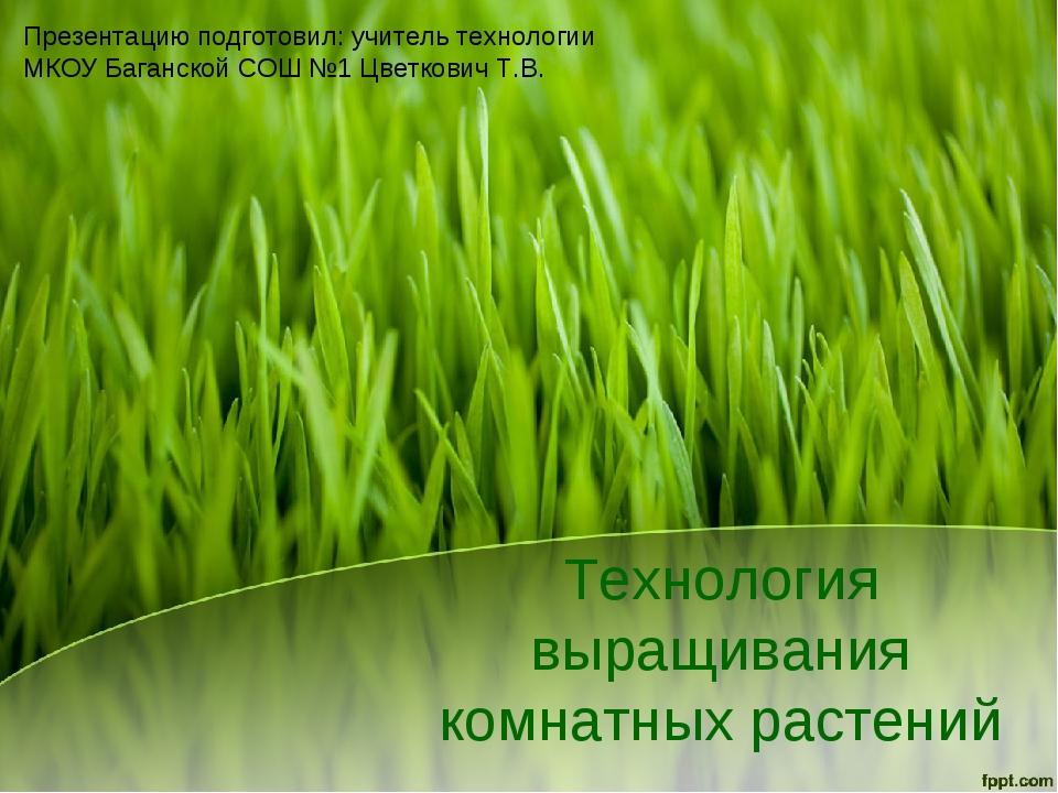 Технология выращивания комнатных растений Презентацию подготовил: учитель тех...