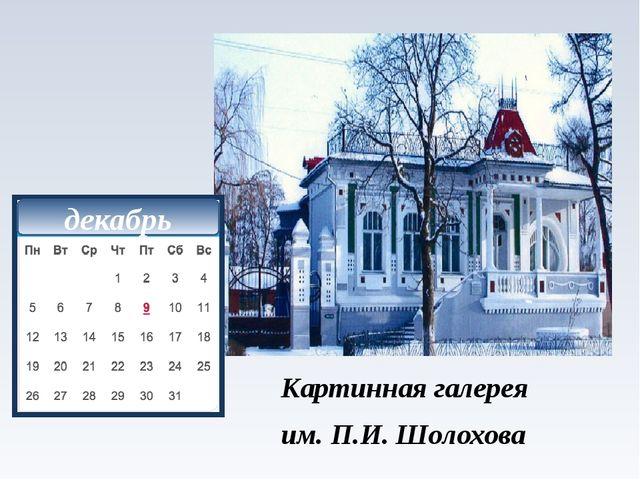 Картинная галерея им. П.И. Шолохова фото декабрь