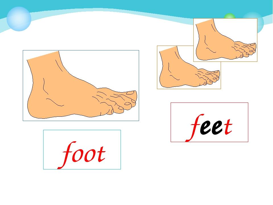 foot feet