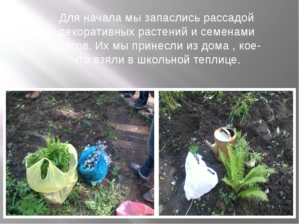 Для начала мы запаслись рассадой декоративных растений и семенами цветов. Их...