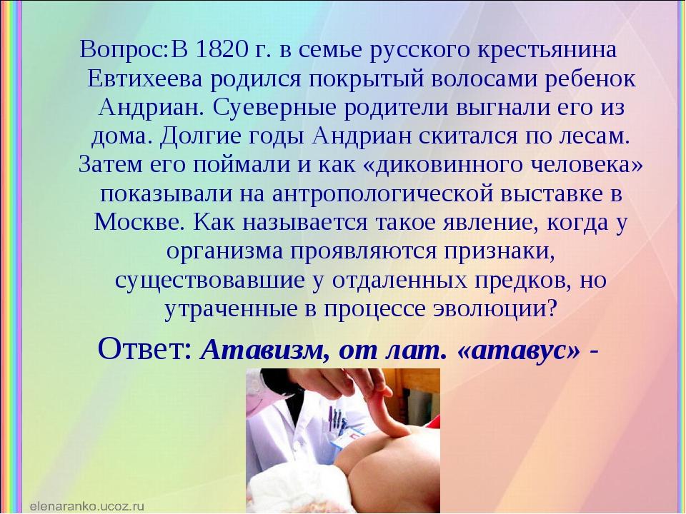 Вопрос:В 1820 г. в семье русского крестьянина Евтихеева родился покрытый воло...
