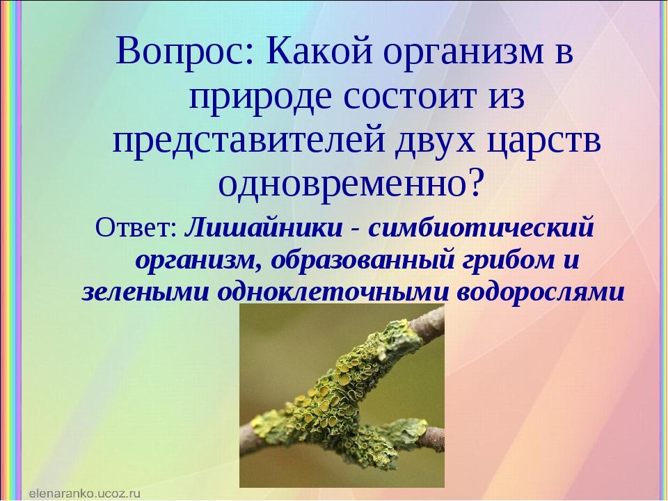 Вопрос: Какой организм в природе состоит из представителей двух царств одновр...