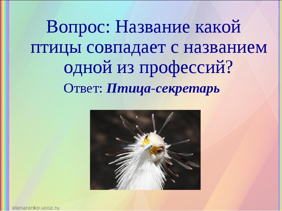 Вопрос: Название какой птицы совпадает с названием одной из профессий? Ответ:...