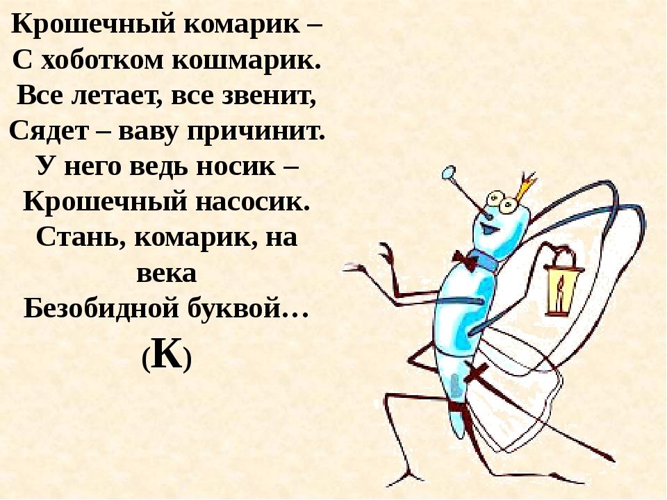 Крошечный комарик – С хоботком кошмарик. Все летает, все звенит, Сядет – ваву...