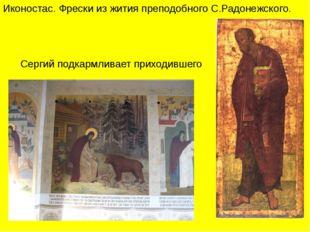 Иконостас. Фрески из жития преподобного С.Радонежского. Сергий подкармливает