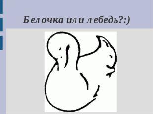 Белочка или лебедь?:)