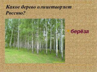 Какое дерево олицетворяет Россию? берёза