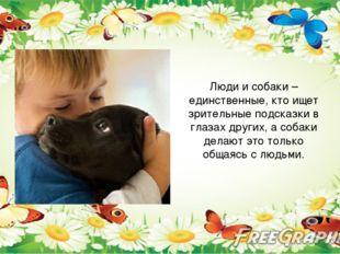 Люди и собаки – единственные, кто ищет зрительные подсказки в глазах других,