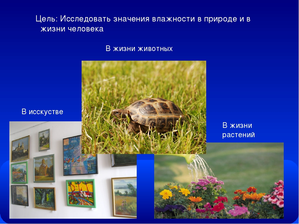 Цель: Исследовать значения влажности в природе и в жизни человека В исскустве...